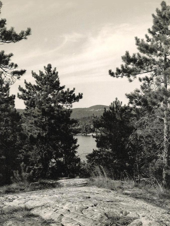 Blueberry Island—09